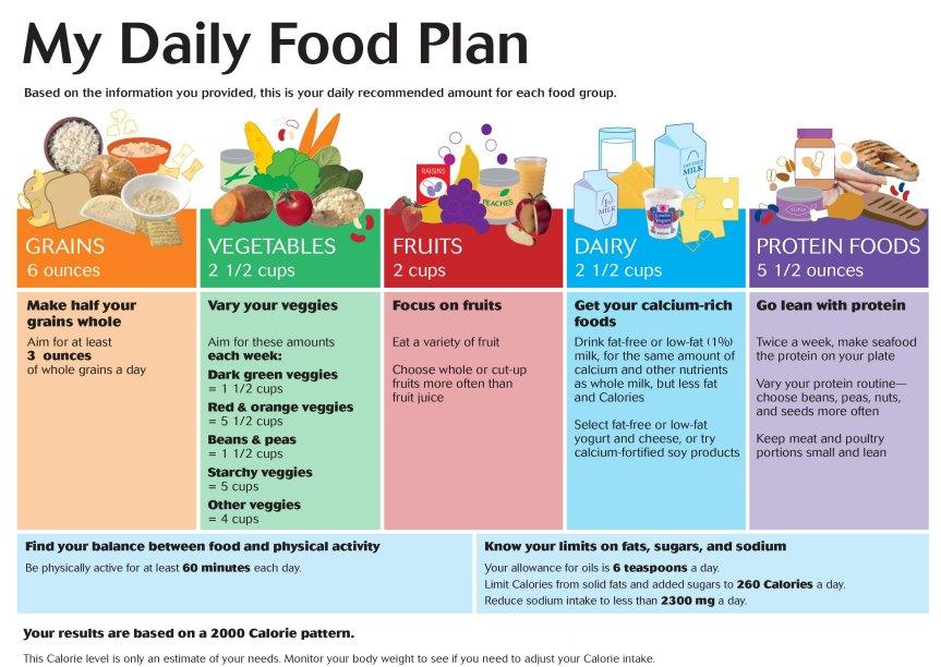 Daily Food Plan-1